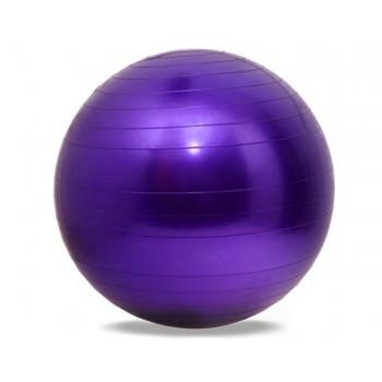 """כדור גדול פיזיו – פיט בול 65 ס""""מ"""